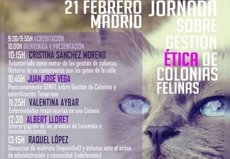 Jornada Felina: Gestión Ética de Colonias Felinas