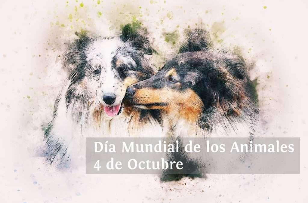 El Día Mundial de los Animales, 4 de Octubre