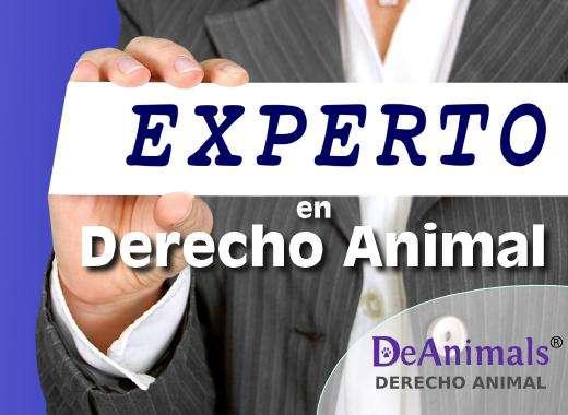 Curso Online Experto en Legislación de Protección Animal