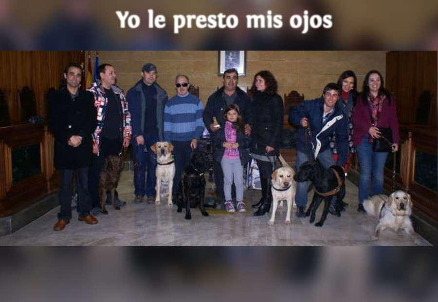 Campaña Yo le Presto mis Ojos | Asociación de Usuarios de Perros Guía de Murcia