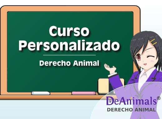 Cursos Online de Derecho Animal Personalizados