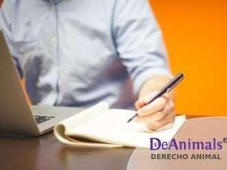 """Cursos Online de Derecho Animal. """"Especialista en Denuncias por Delito de Maltrato Animal"""""""