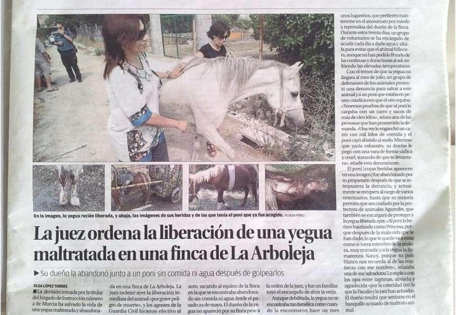 Artículo de prensa del Caso pony y yegüa maltratadas. Liberadas por DeAnimals