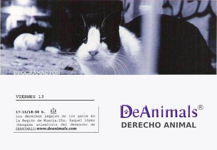 CONFERENCIA: Los Derechos Legales de los Gatos en Murcia en la Universidad de Cartagena