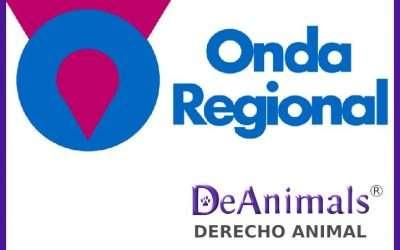 Entrevista Onda Regional de Murcia a Raquel López Teruel