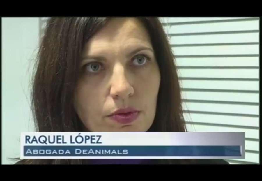 Entrevista a Raquel López Teruel, en la televisión Popular TV (Murcia).