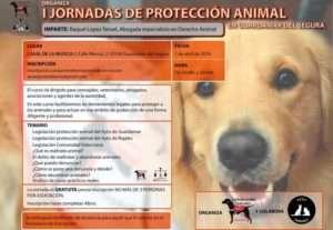 Cartel de la I Jornadas de Protección Animal en Guardamar del Segura