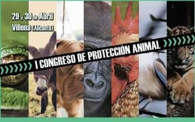 I Congreso de Protección Animal en Villena (Alicante)