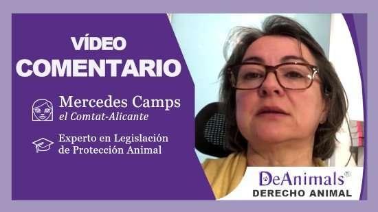 Video-Comentario-DeAnimals-Cristina-Soto-Leganés-Madrid
