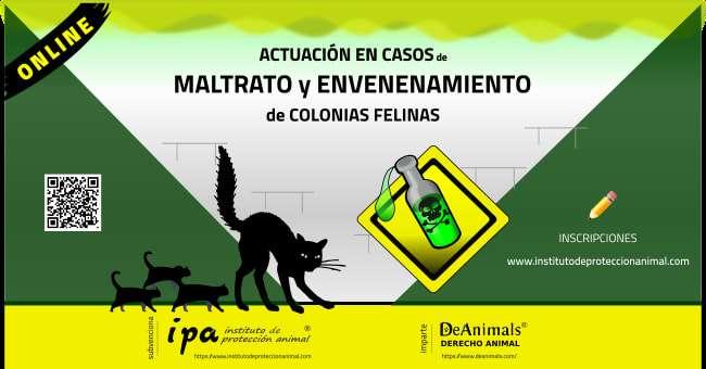 Actuación en Casos de Maltrato y Envenenamiento de Colonias Felinas
