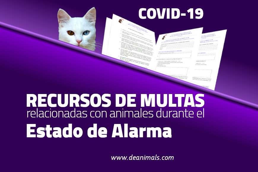 ¿Cómo recurrir las multas por atender animales durante el Covid-19? – Recurso Gratuito
