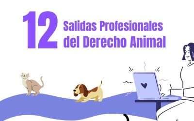12 Salidas Profesionales del Derecho Animal