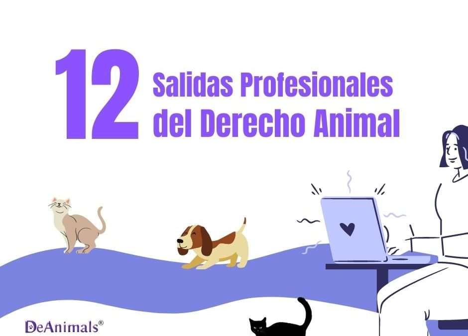 Las 12 Salidas Profesionales del Derecho Animal