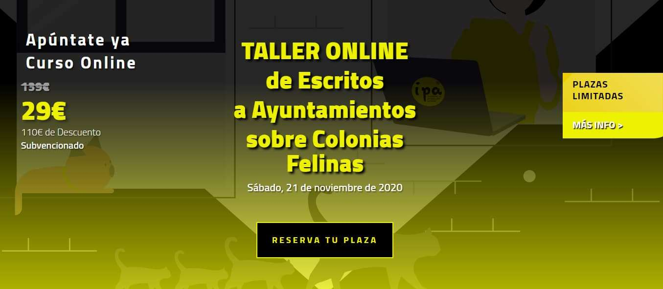 Taller Online de Escritos a Ayuntamientos sobre Colonias Felinas