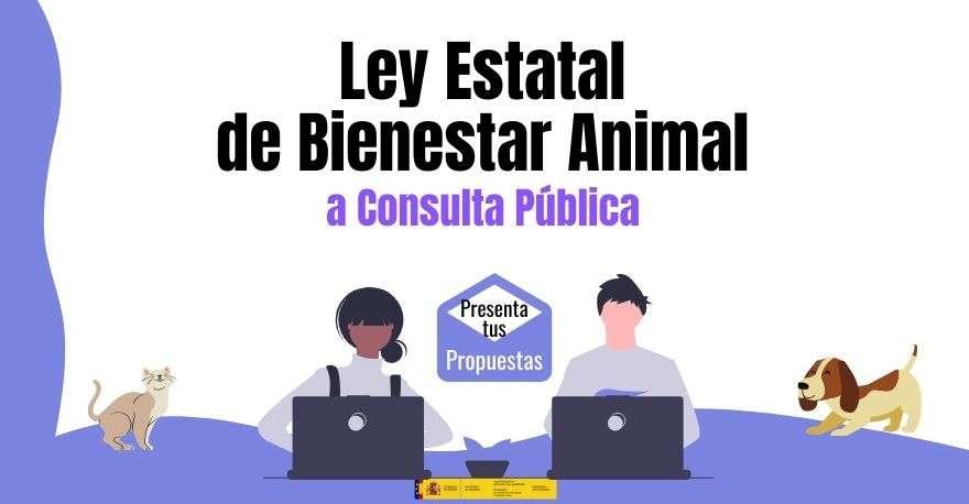 Ley de Bienestar Animal a Consulta Pública