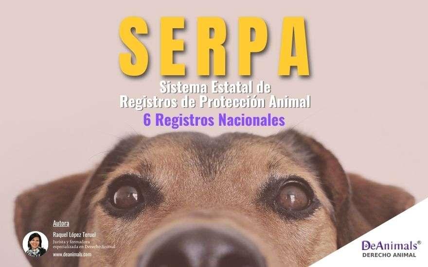 Sistema Estatal de Registros de Protección Animal (SERPA) a consulta