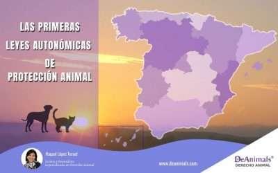 Las primeras leyes autonómicas de protección animal